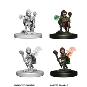 Pathfinder Deep Cuts Unpainted Miniatures: Gnome Male Druid ^ Aug